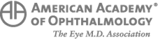 American Acedemy Of Ophthalmology - Best Ophthalmologist Detroit